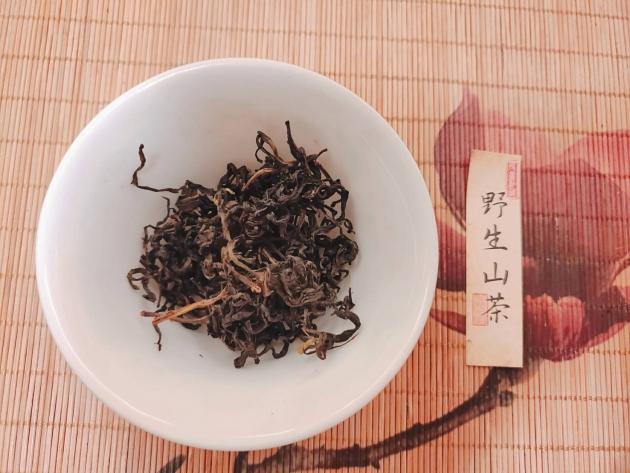 109年度林業試驗所招標第2,7,9,10林地保護區野生山茶(完售) 2